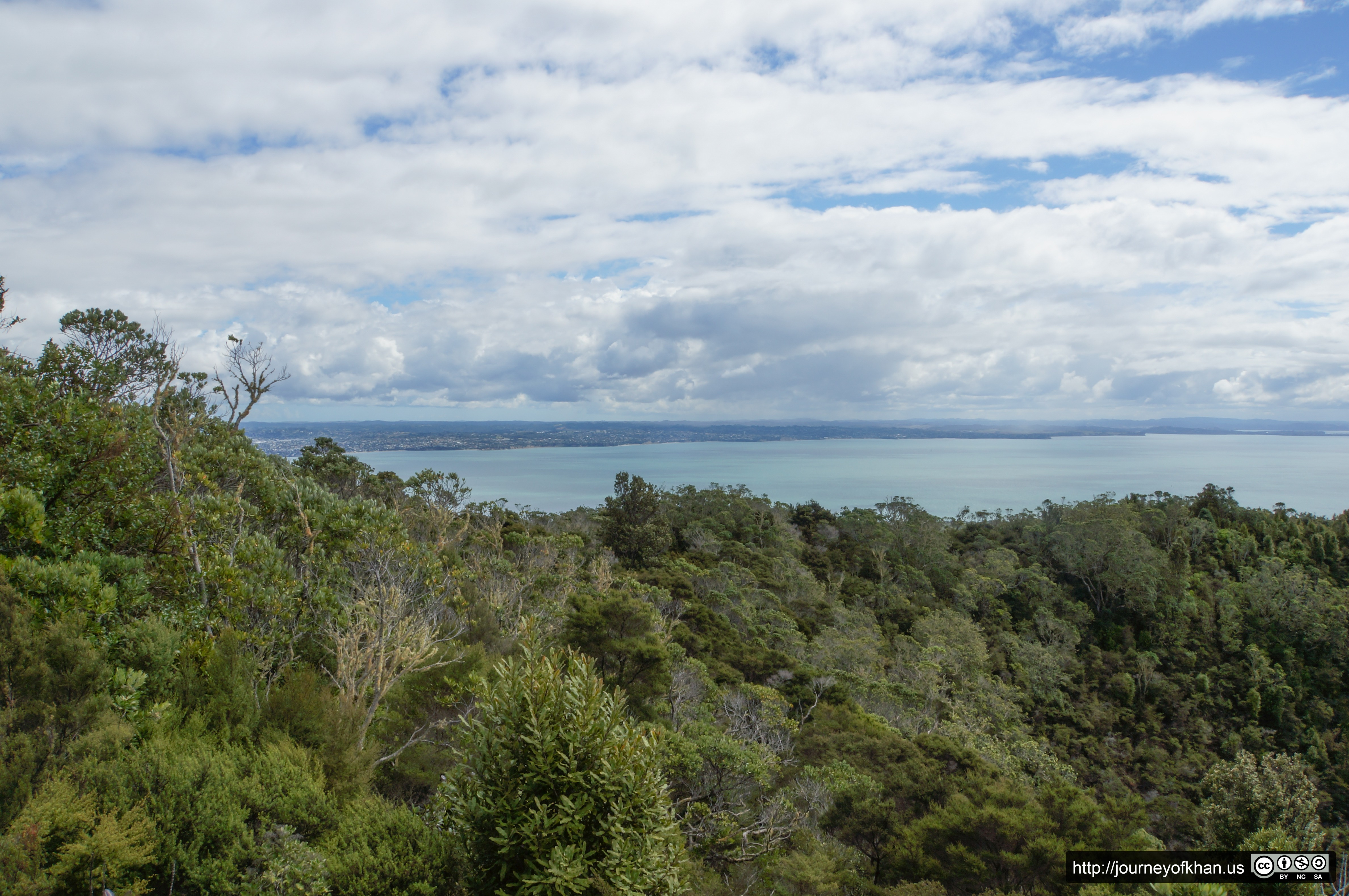The Bay and Rangitoto (High Resolution)