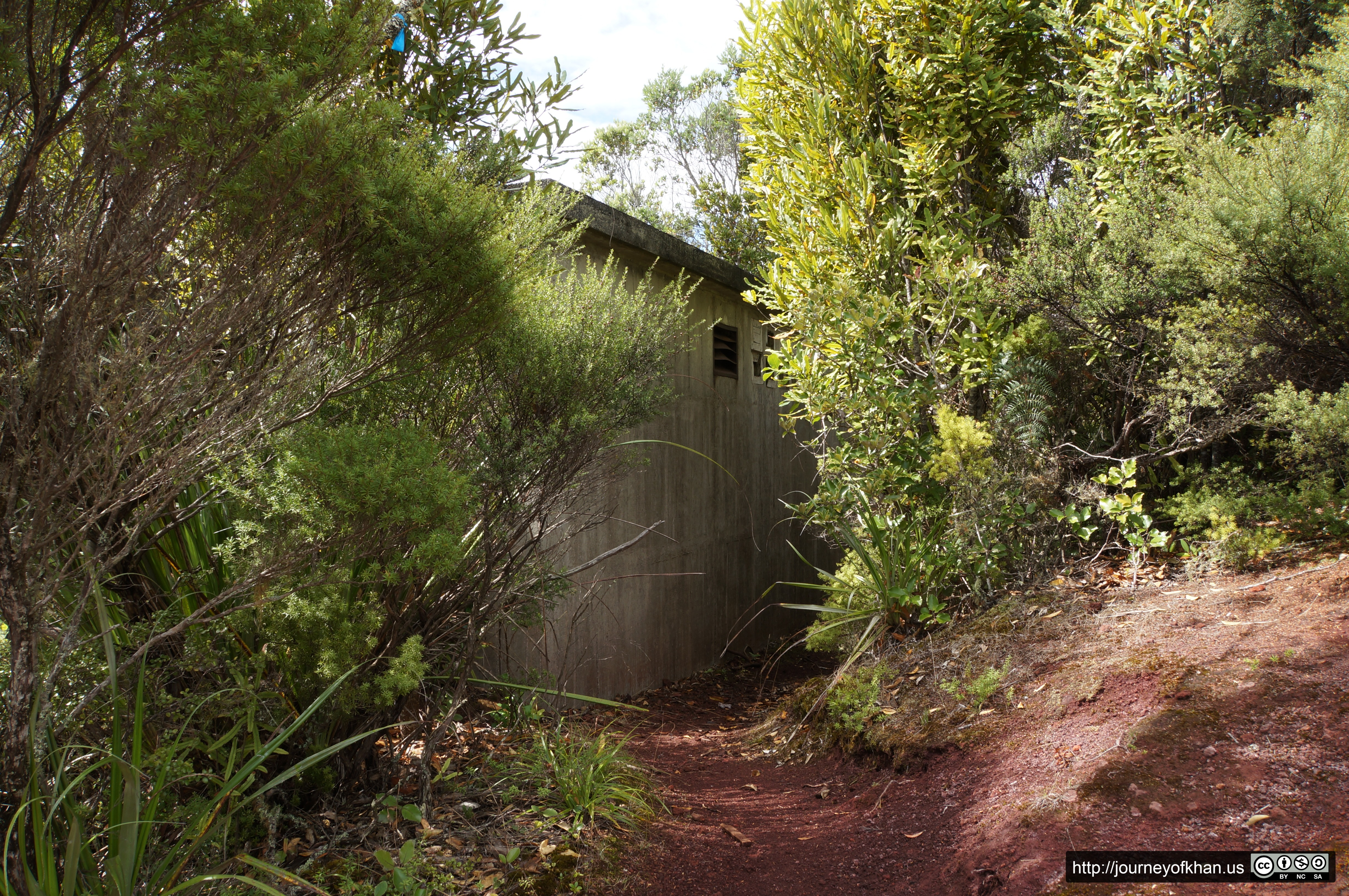 Behind a Concrete Bunker on Rangitoto Island (High Resolution)