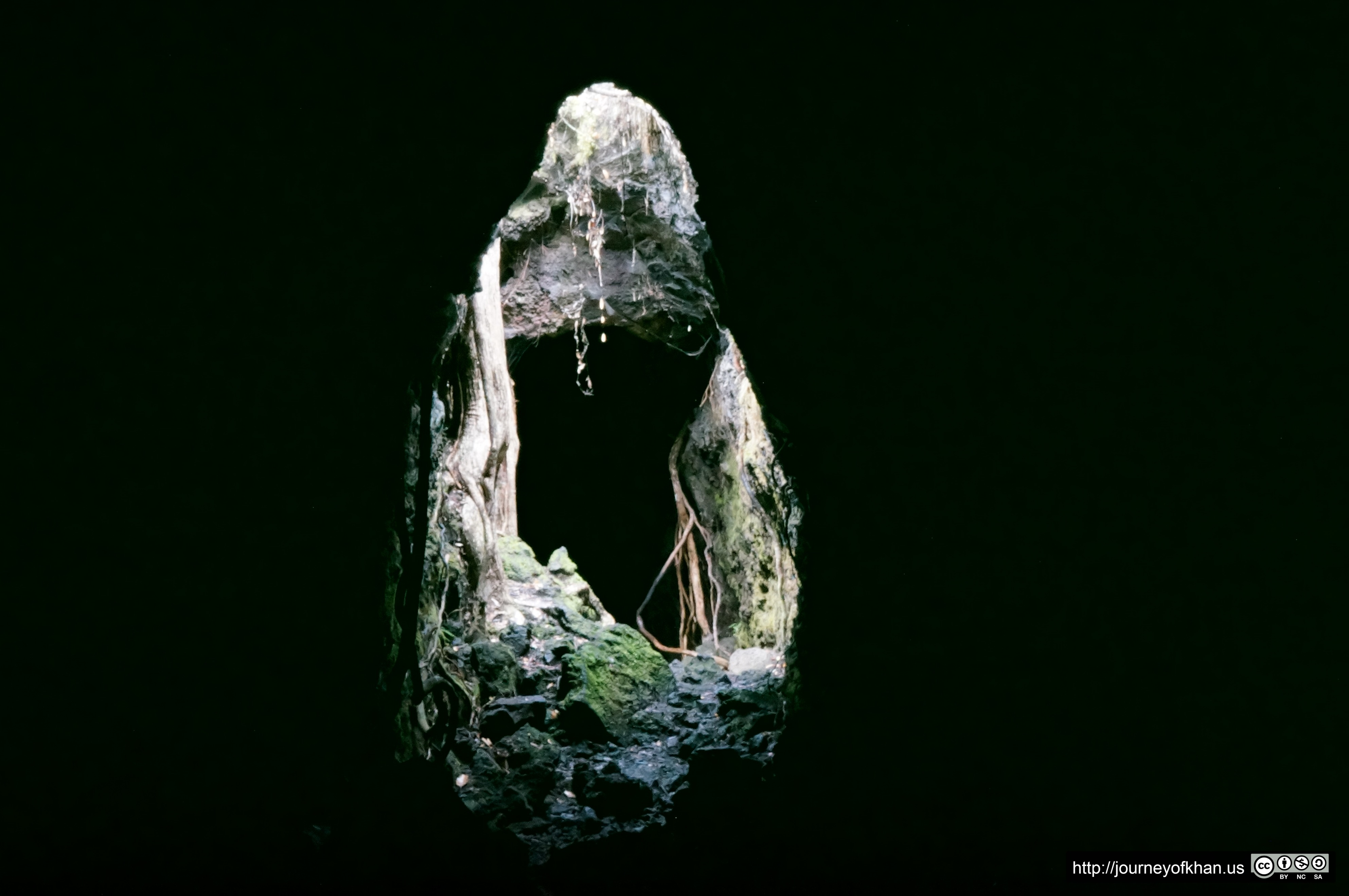 Birth from a Cave (High Resolution)