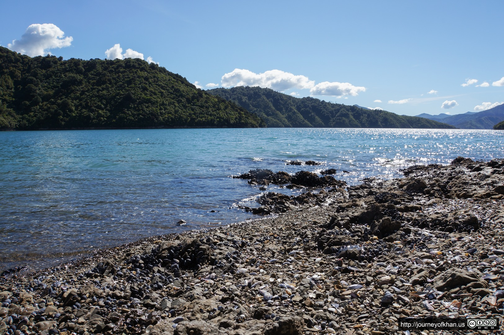 The Shores of Picton